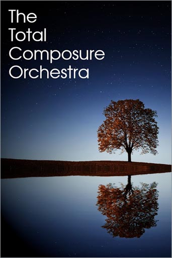 The Total Composure Orchestra